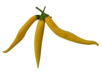 Cayenne Gelb 10 Samen