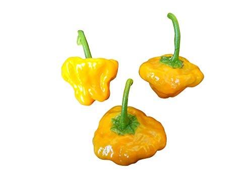 Scotch Bonnet Gelb (Mushroom Var.) 10 Samen