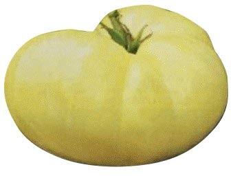 Tomate -Great White- 10 Samen **Weisse Beefsteak-Tomate**