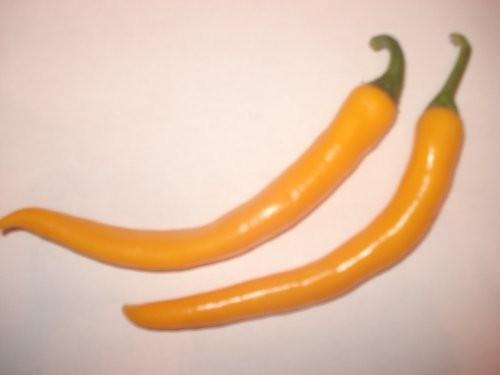 Spanischer Pfeffer Gelb 10 Samen