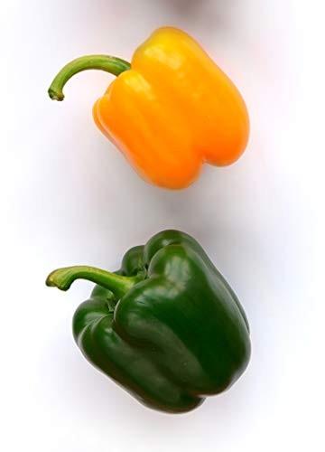 Süßer Paprika -Sunbright- 20 Samen