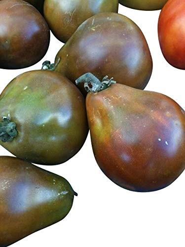 Tomate Black Truffle 10 Samen