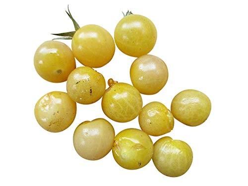 Weisse Johannisbeertomate 10 Samen