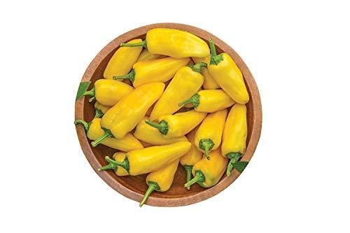 Paprika -Lemon Dream- 5 Samen