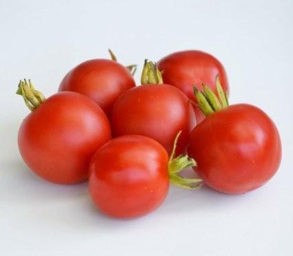 Freiland Tomate -Outdoor Girl- 10 Samen