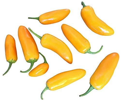 Jalapeno Gelb 10 Samen