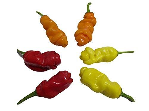 Lustiger Penis-Chili Mix''  30 Samen