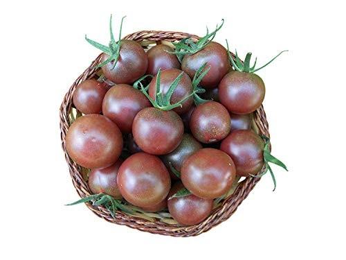 "Tomate""Black-Cherry"" 1.000 Samen"