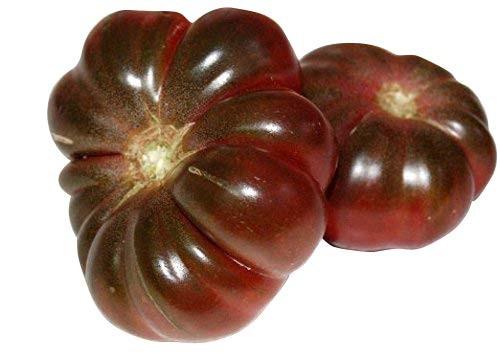 Tomate -Purple Calabash- 10 Samen -Rarität-
