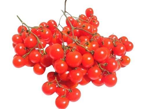 Tomate -Riesentraube- 10 Samen