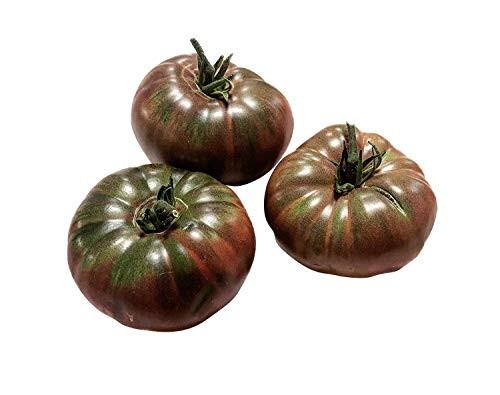 Tomate Sputnik 10 Samen