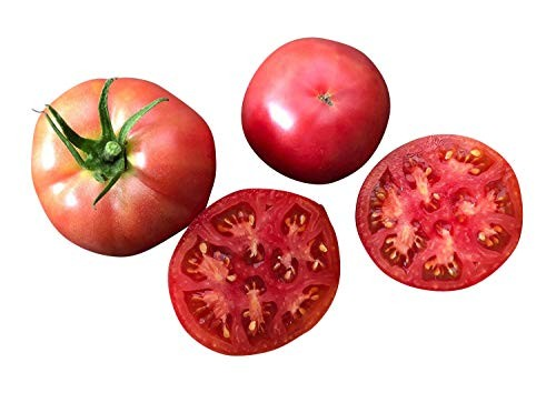 Tomate Berner Rose 10 Samen