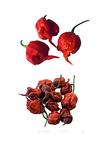 Carolina Reaper Chili Mix 2 Sorten