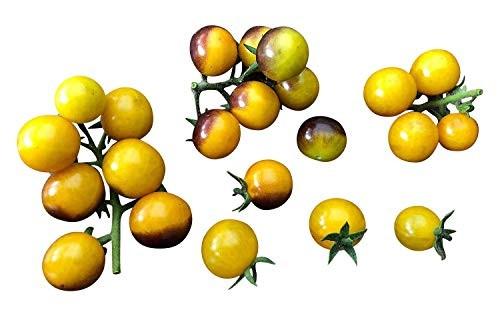 Tomate Yellow Blueberry 10 Samen