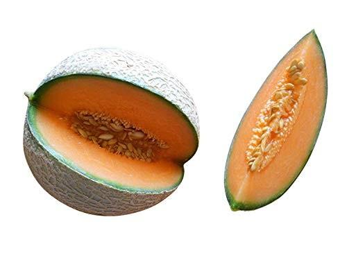 Melone Cantaloupe 10 Samen
