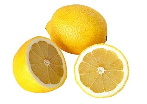 Zitronen Baum -citrus x Limon- 5 Samen