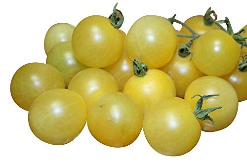 Tomate -White Cherry- 10 Samen