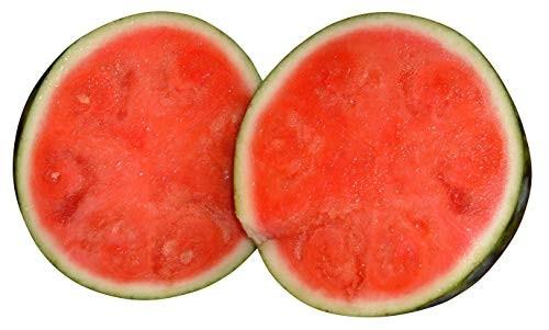 Wassermelone -Sugar Baby - 10 Samen