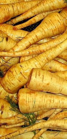 Pastinaken -pastinaca sativa- 200 Samen