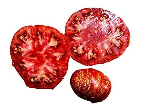 Tomate -Feuerwerk- 10 Samen