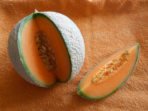 Melone Charentais 5 Samen