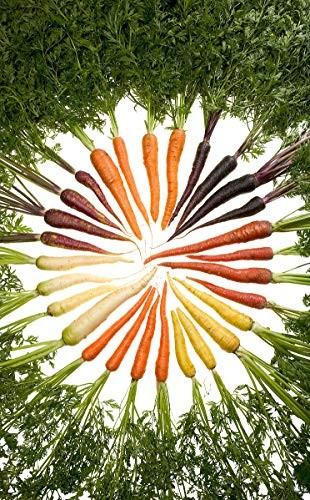 Regenbogen Karotten *Bunter Mix* 200 Samen