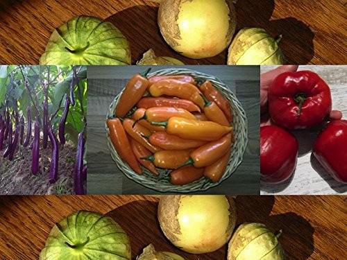 Riesiges Gemüse ☆ Die perfekte Kollektion für den Garten ☆ 60 Samen