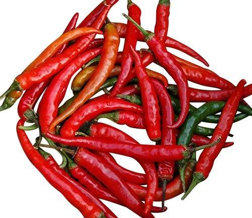 Chili -Ring of Fire- 10 Samen