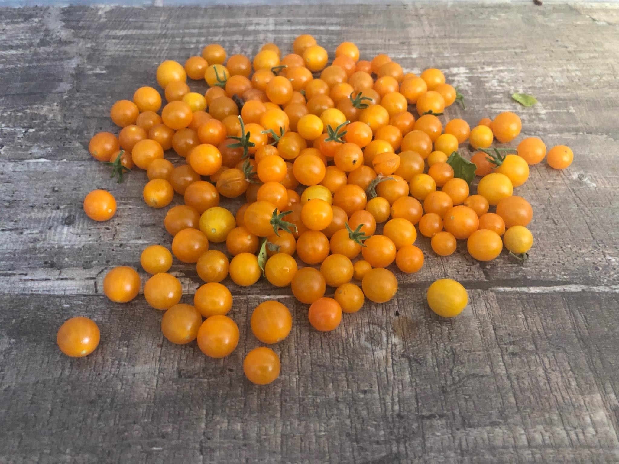 Gelbe Johannisbeer Tomate 10 Samen