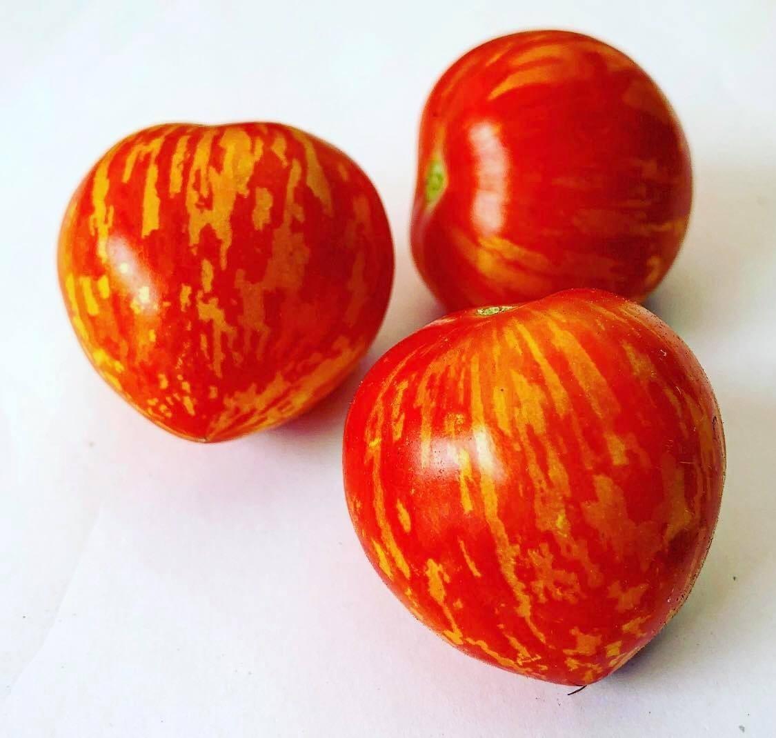 Tomate Tigerette Rot 10 Samen
