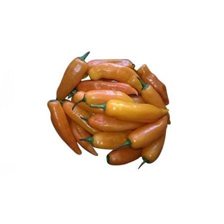 Aji Amarillo Chili 1.000 Samen