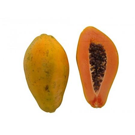 Melonenbaum -carica papaya- 10.000 Samen