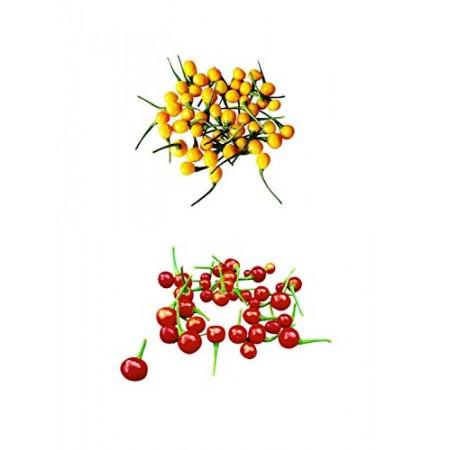 Aji Charapita Wildchili Sortiment 20 Samen