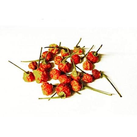 Getrocknete Charapita Chili 1 g -Teuerste Chili der Welt- WILDCHILI- Delikatesse/Feinkost