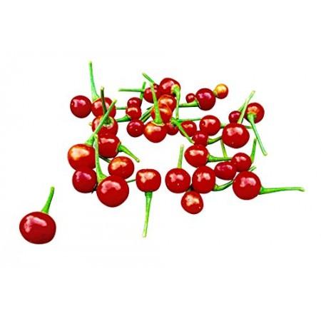 Aji Charapita Rot 10 Samen