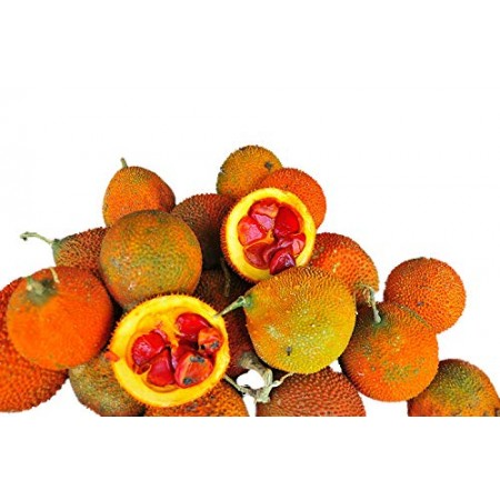 Baby Jackfrucht -Momordica cochinchinensis- 3 Samen