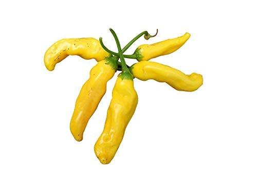 Ananas-Chili -Aji Pineapple- 10 Samen